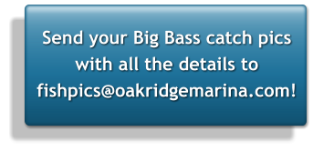 Send your Big Bass catch pics with all the details to fishpics@oakridgemarina.com!